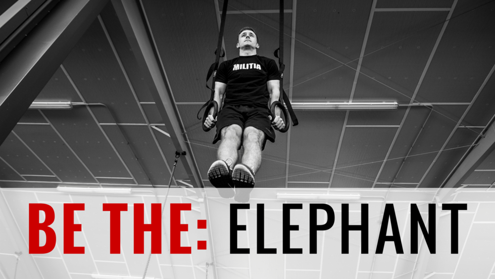 BE THE ELEPHANT (OLYMPIC POWER) 6-Week Program | 43 Total Training Days | 44 Athlete Brief Videos | Goal: Increase Power and Become Extremely Well-rounded The strength base of this program follows a power split. We will work on pulls, being explosive, and some Olympic lifting. We are going to work on building strength…while also increasing our work capacity. We are going to work on endurance…while also developing our skills.