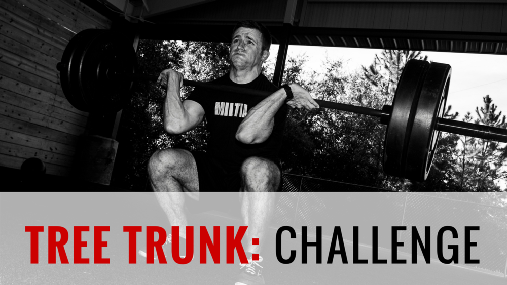TREE TRUNK (SQUAT EVERY DAY PROGRAM) 3-Week Program | 21 Total Training Days | 22 Athlete Brief Videos | Goal: Increase Squat We are going to be building our trunks, our base, our legs by…Squatting! In fact, we are going to squat everyday! 21 days of squatting, different variations, different percentages, somedays weighted some days not. Welcome to the squat club and welcome to the tree trunk program!
