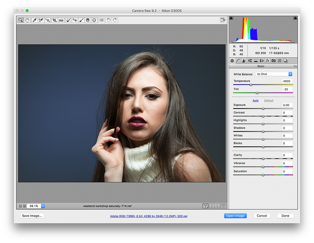Adobe Camera RAW Preview | nickdjeremiah.com