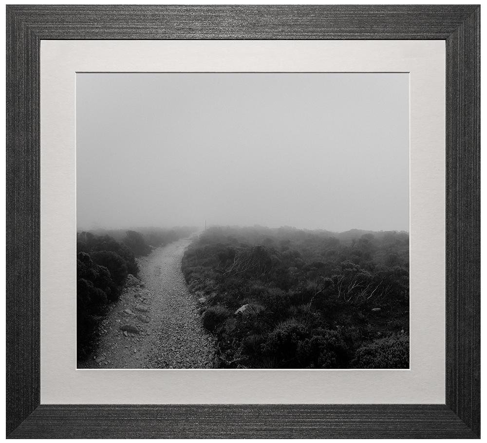 Walk Quietly #1 - Frame Size: 22