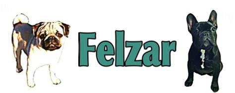 Felzar is our dear friend and someone we HIGHLY recommend. We are fortunate to be able to use Felzar's studs for our breeding program.