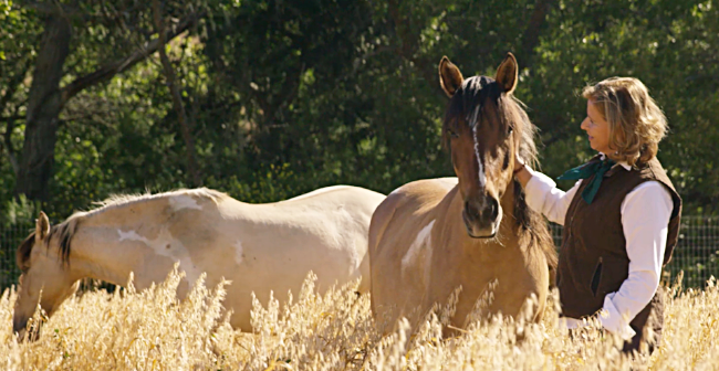 Linda at Return To Freedom with wild horses