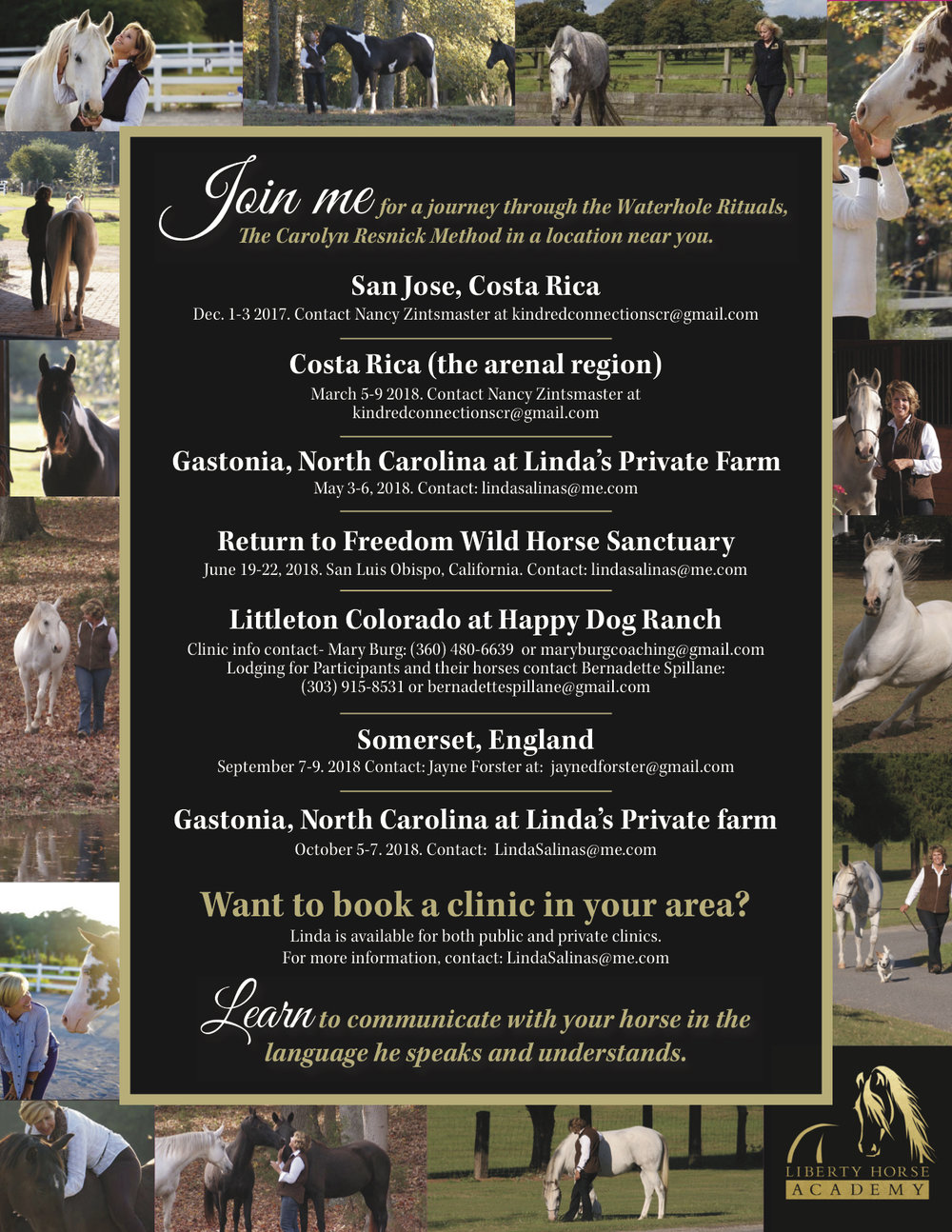 Final Liberty Horse Academy Flyer.jpg