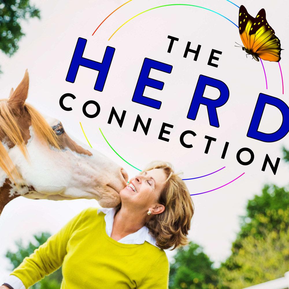 Herd Connection6 (1).jpg
