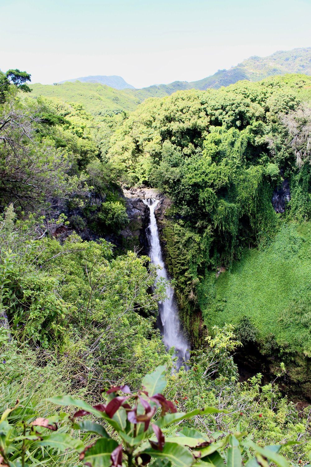 One of the many waterfalls on the road to Hana.