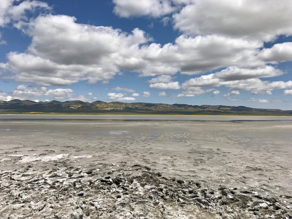 An up close view of Soda Lake, that's almost dried out.