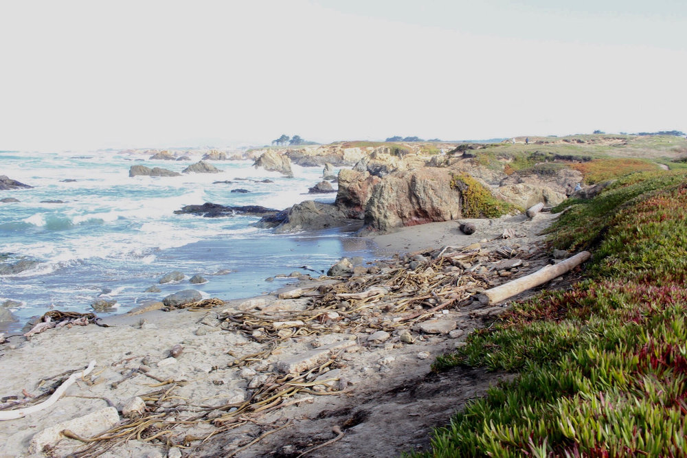 We also went to  Glass Beach . The views  of the ocean were pretty great.