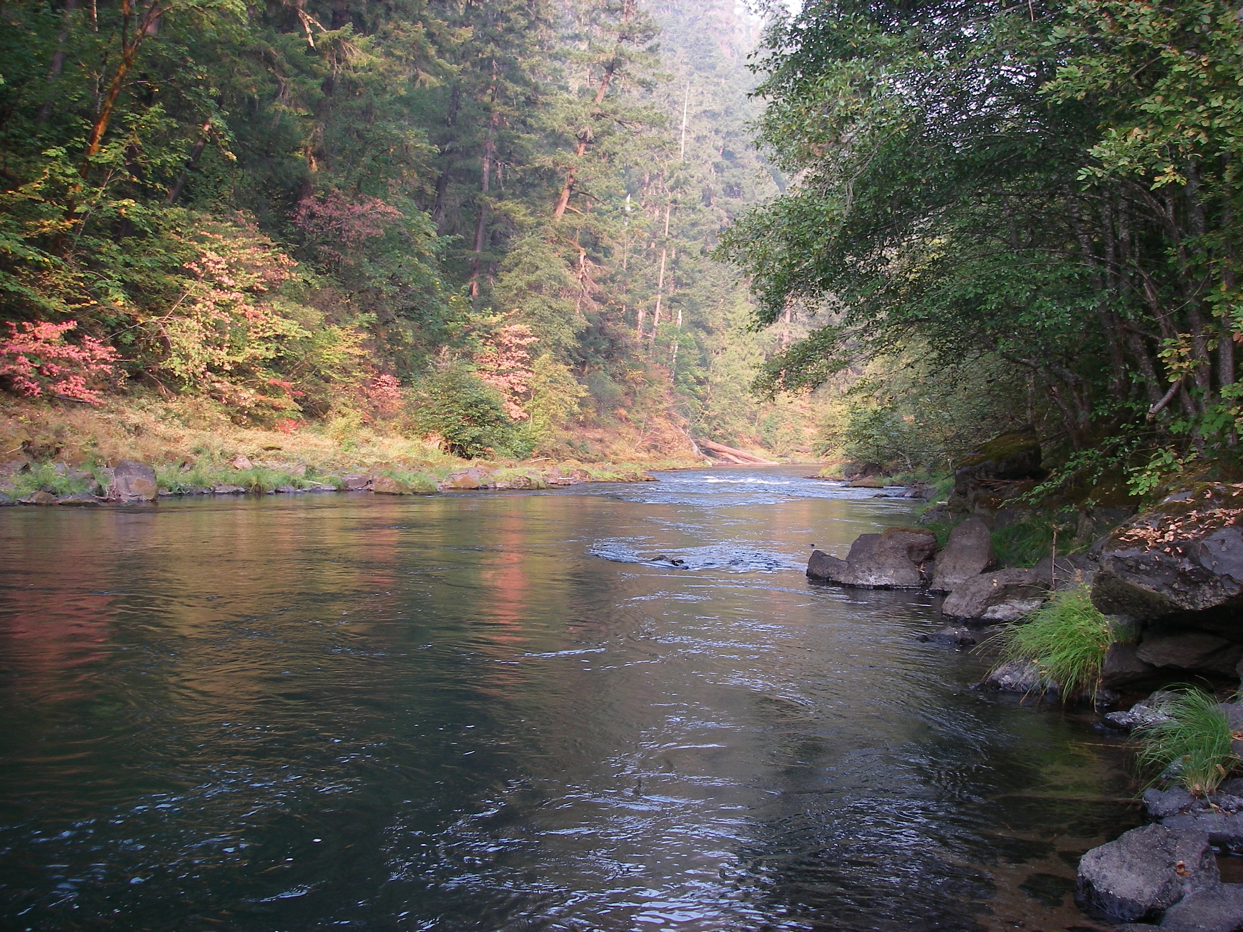 The beginning signs of fall on the North Umpqua