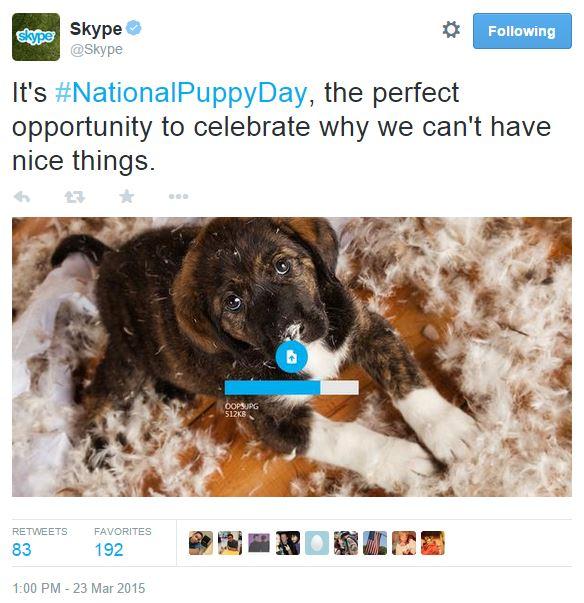 Skype_PuppyDay.JPG