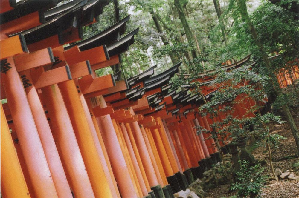 Japan_35mm_Fushimi-Inari_05.jpg