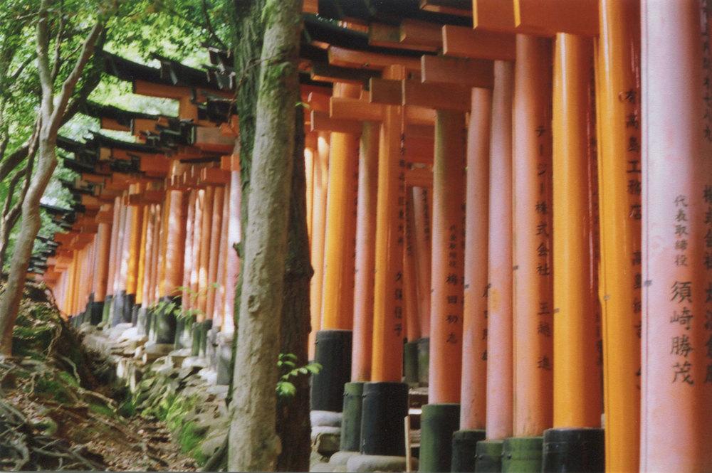 Japan_35mm_Fushimi-Inari_06.jpg