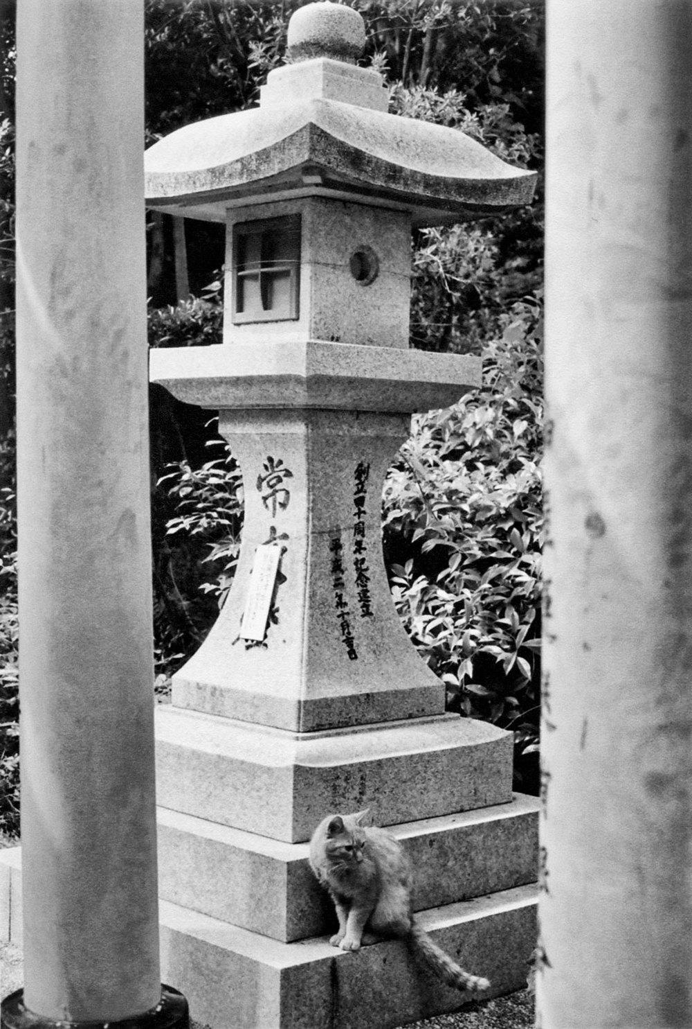 Japan_35mm_Fushimi-Inari_11.jpg