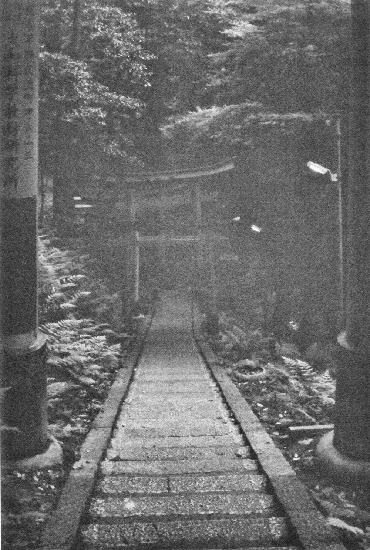 Japan_35mm_Fushimi-Inari_13.jpg