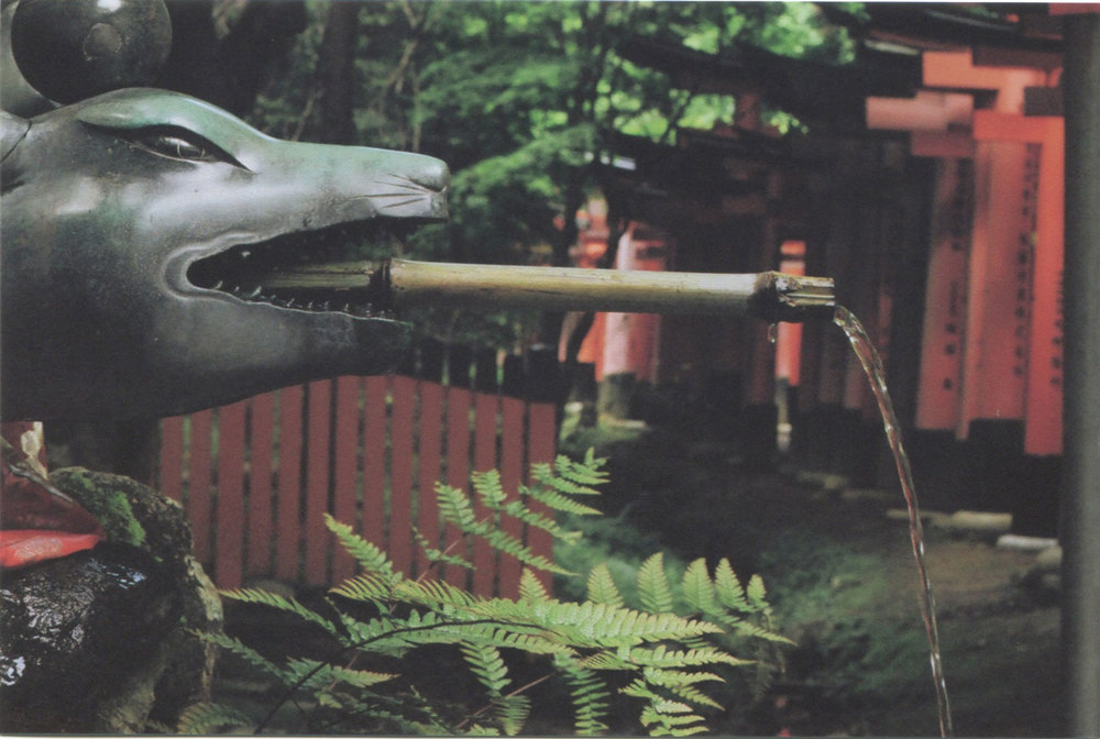 Japan_35mm_Fushimi-Inari_19.jpg