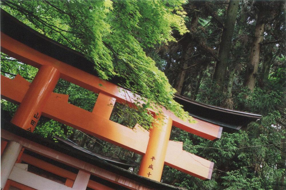 Japan_35mm_Fushimi-Inari_17.jpg