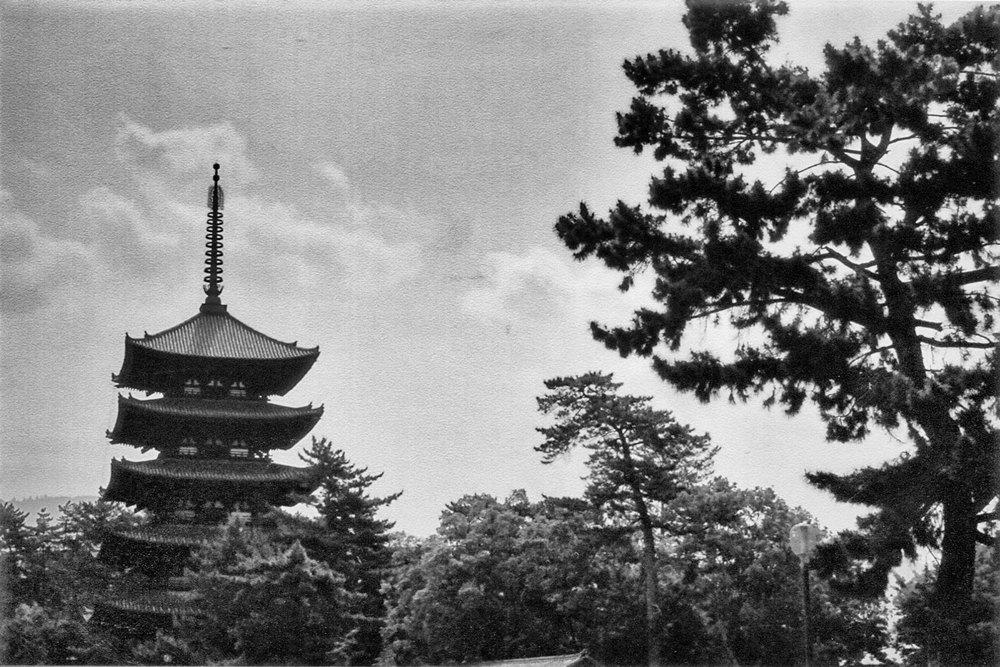 Japan_35mm_Kyoto_08.jpg