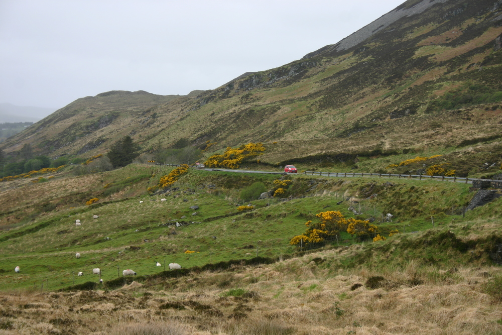 road to gweedore.jpg