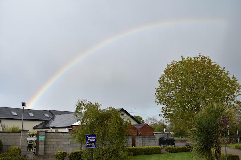 Rainbow 2 web.jpg