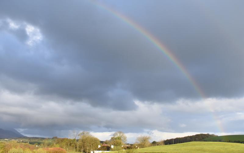 Rainbow web.jpg