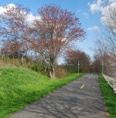 Fall_River_bike_path.jpg
