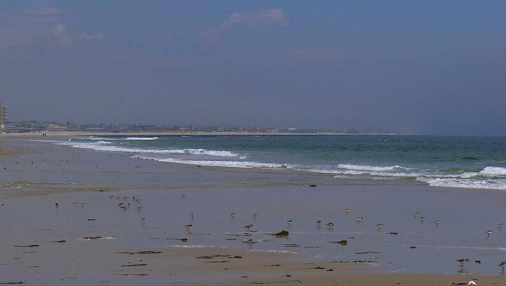 beach22-X2.jpg