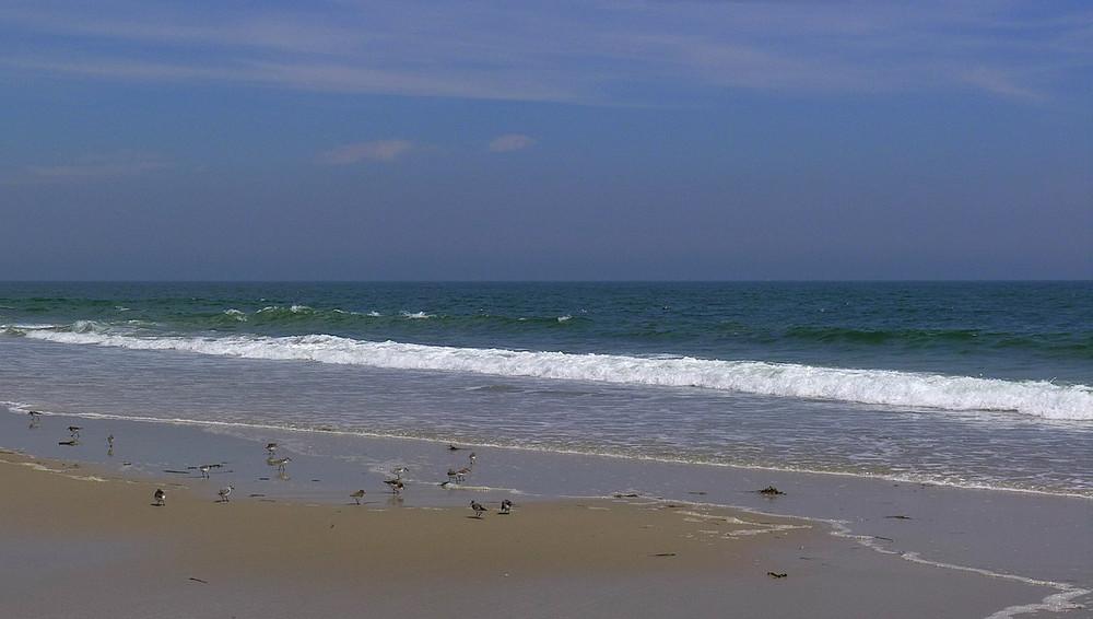 beach8-X2.jpg