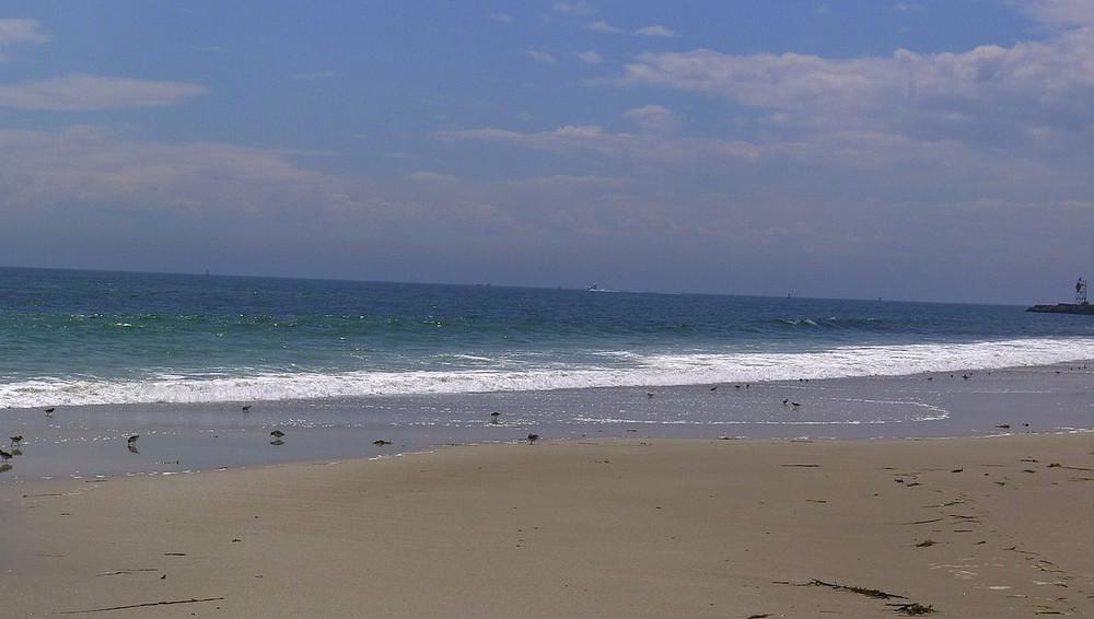 beach7-X2.jpg