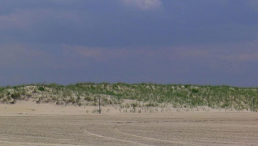 beach6-X2.jpg