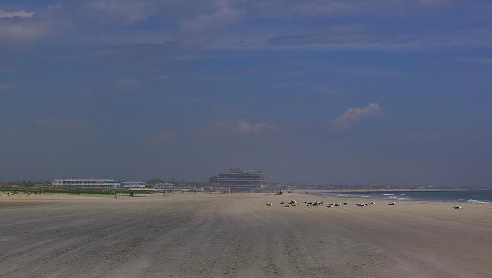beach5-X2.jpg