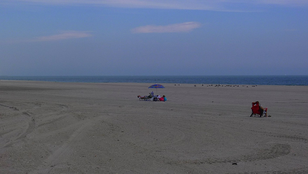 beach1-X2.jpg