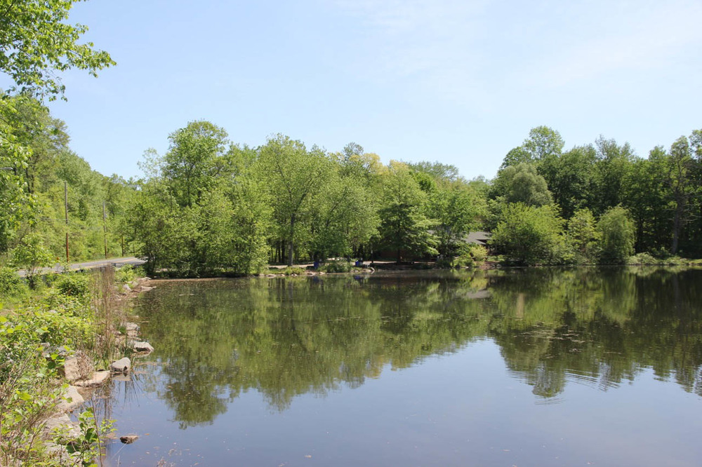Closter Nature Center, 154 Ruckman Rd 5, Pond.jpg