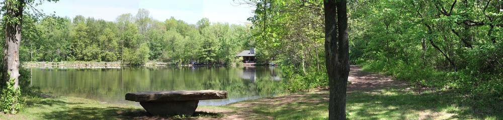 Closter Nature Center, 154 Ruckman Rd 18, Pond.jpg