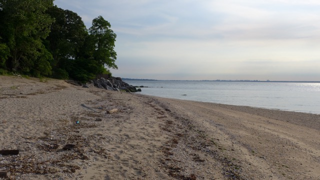 th_231 North Beach.jpg