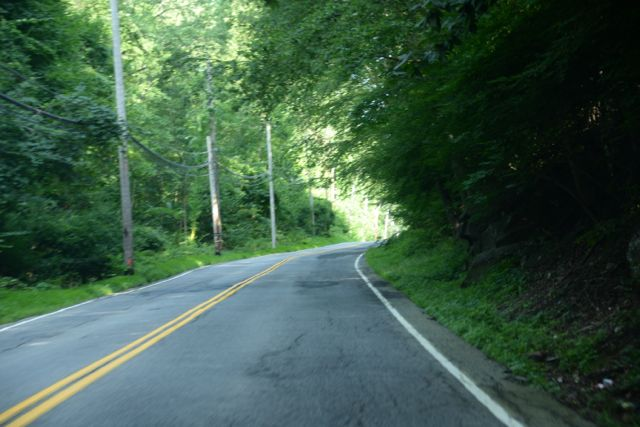 Roads Near Blue Mountain Bike