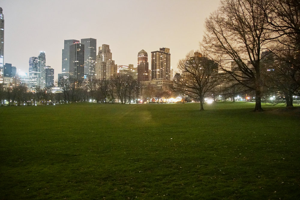 Sheep's Meadow - Central Park
