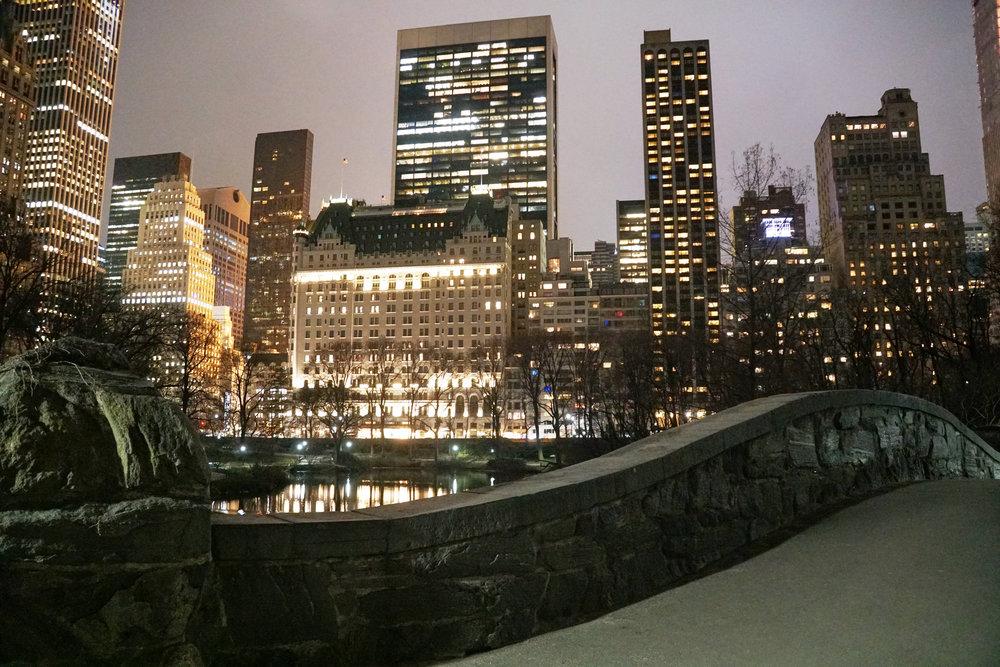 Gapstow Bridge - Central Park