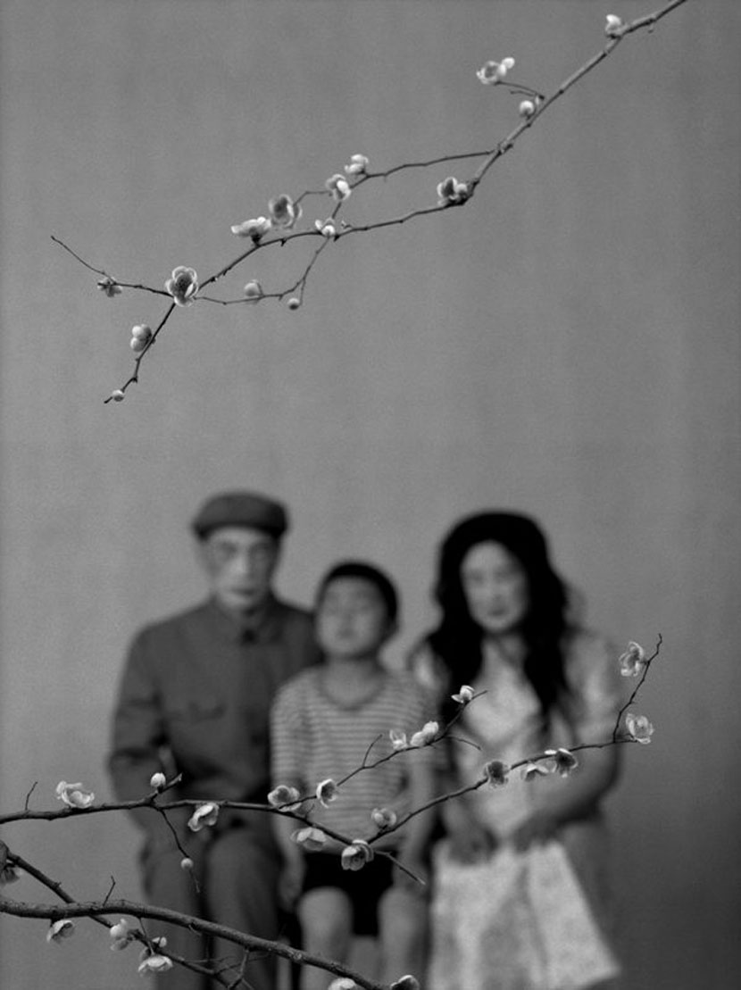 Wang Ningde Some Days 24