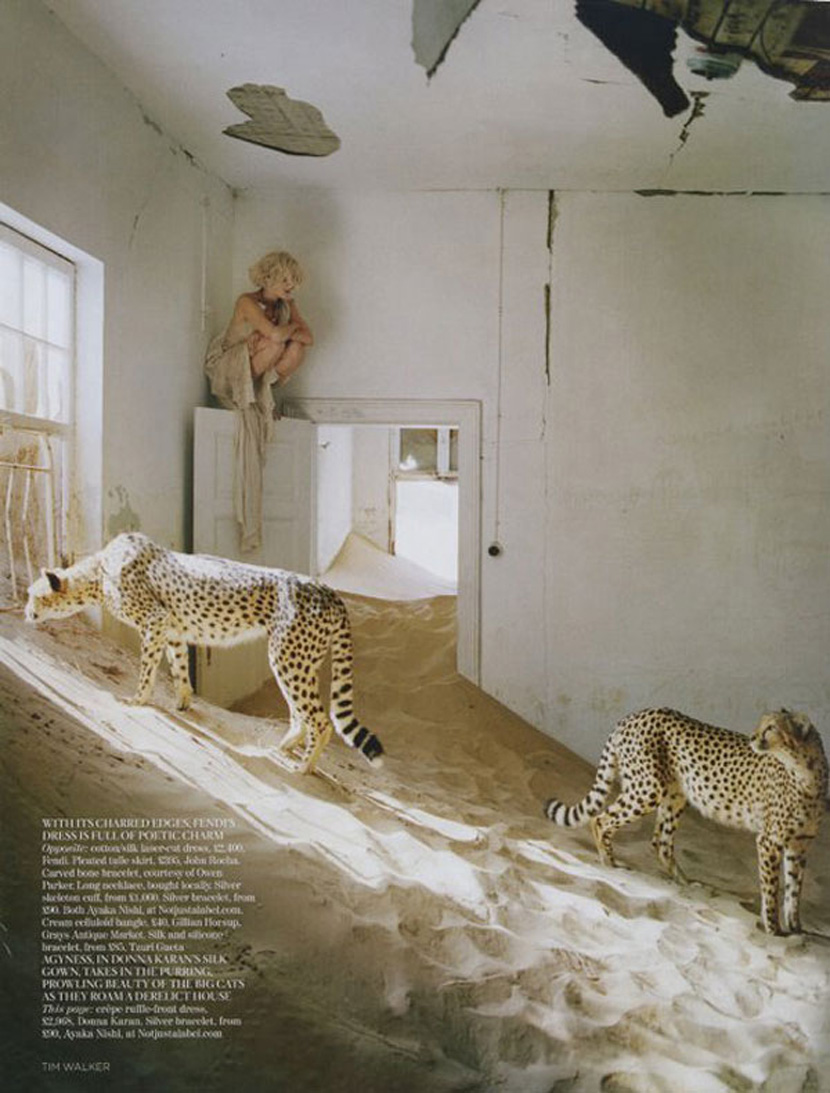 Agyness-Deyn-by-Tim-Walker-for-Vogue-UK-May-201107