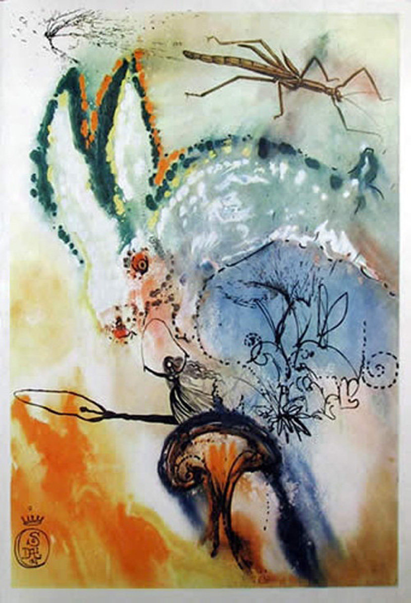 Salvador Dali Down The Rabbit Hole