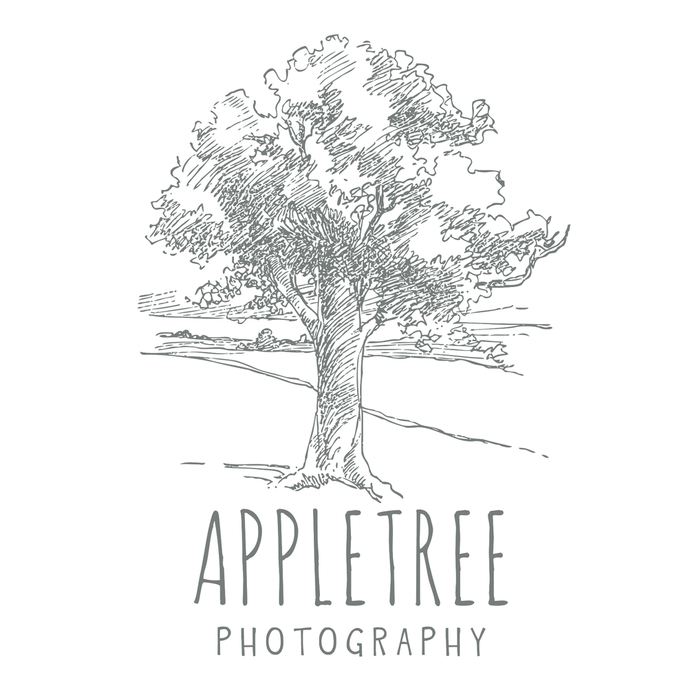6x6 appletree  business card? .jpg