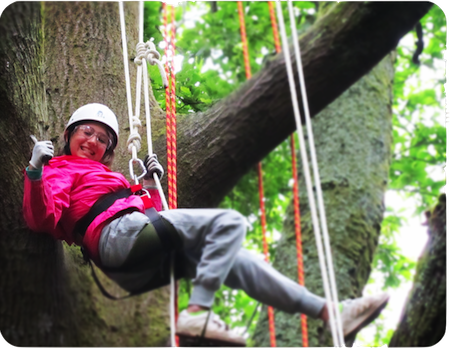 tree climbing summer camp children cornwall.PNG