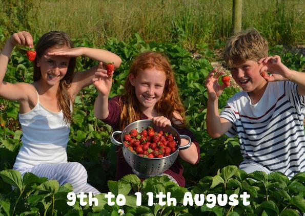 cornwall uk summer camp growing.jpg