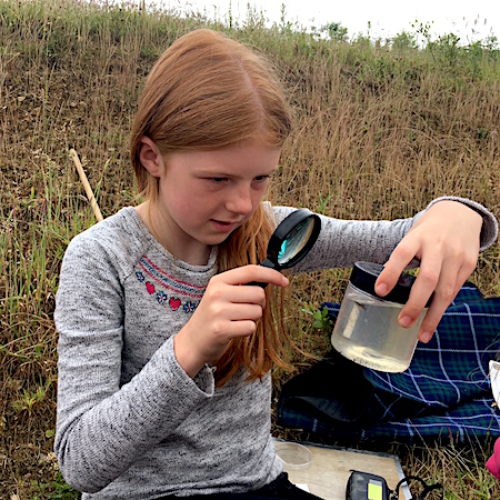 POND DIPPING - discover the weird and wonderful creatures which lurk beneath the depths of the pond.