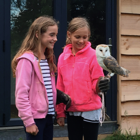 FALCONRY - We're fortunate to have resident buzzards, tawny owls and barn owls who have made their home here. This is an opportunity to learn more about these beautiful birds, hold them and experience them in flight at close quarters.