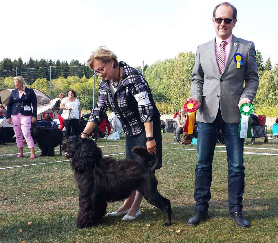 CoCo-winning-BOB-in-Sweden-and-CACIB-Sept-2013.jpg
