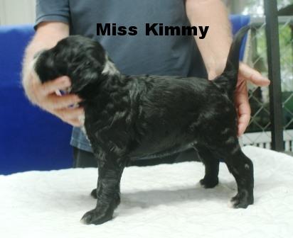 Kimmy Girl.JPG
