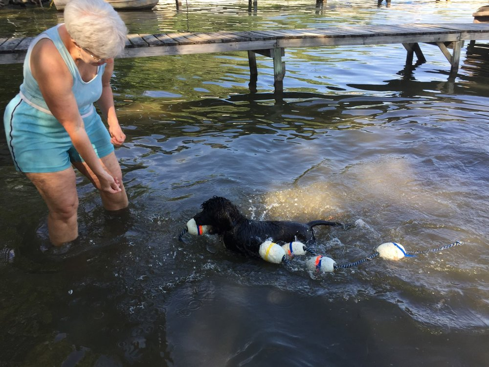 Swimming at 4 months with the l ine.jpg