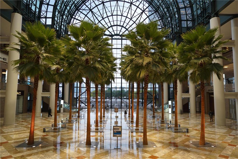 The Winter Garden at Brookfield Place, NYC