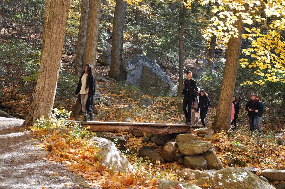 Copy of The Waterfall Bridge