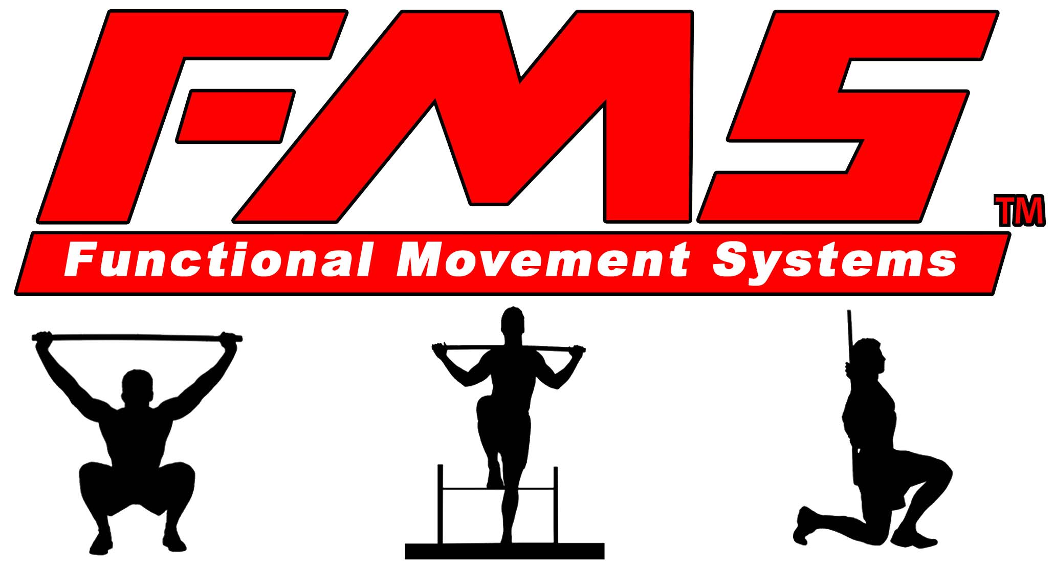 Functional Movement Screen Fms Course Review Perfect Stride
